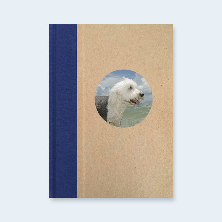 T  ONY MENDOZA   |    F    lorida Dogs  | One Picture Book Two #4 |   Order >