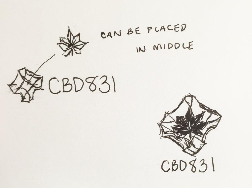 cbd_idea3_1.jpg
