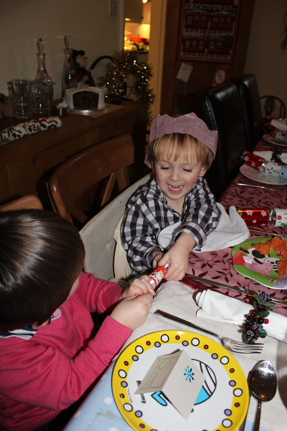 Happy Families - Skye and his cousin - Christmas 2011
