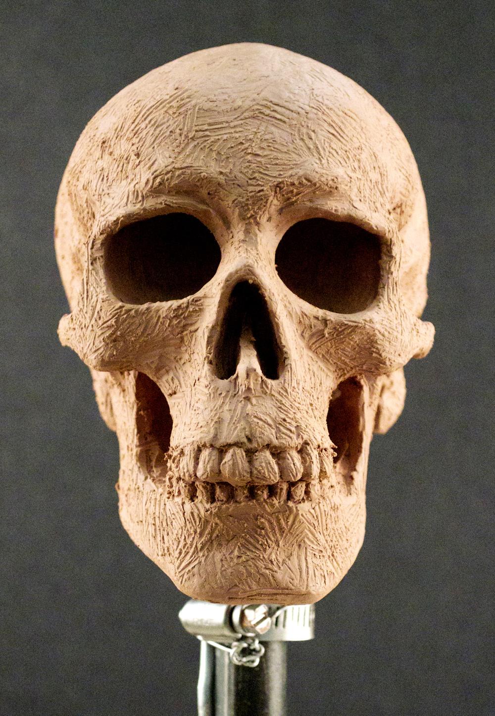 lack,e.Skull2-1.jpg