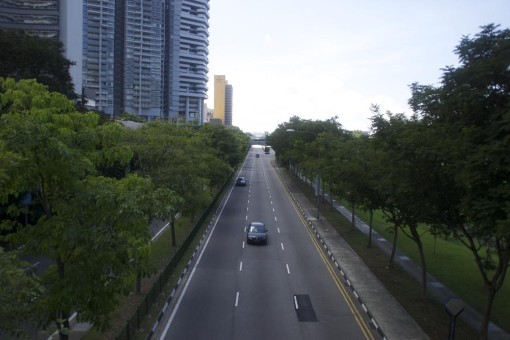 1 road.jpg