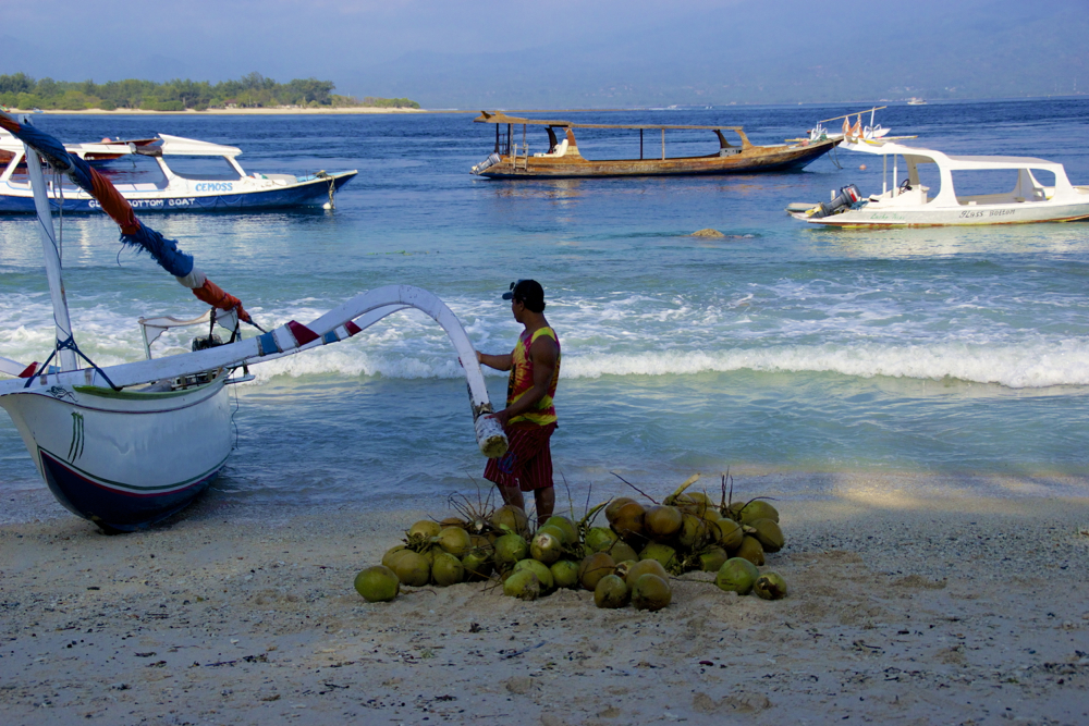 20 cocos.jpg
