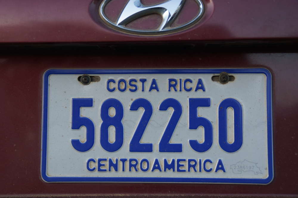 DSC05744.jpg