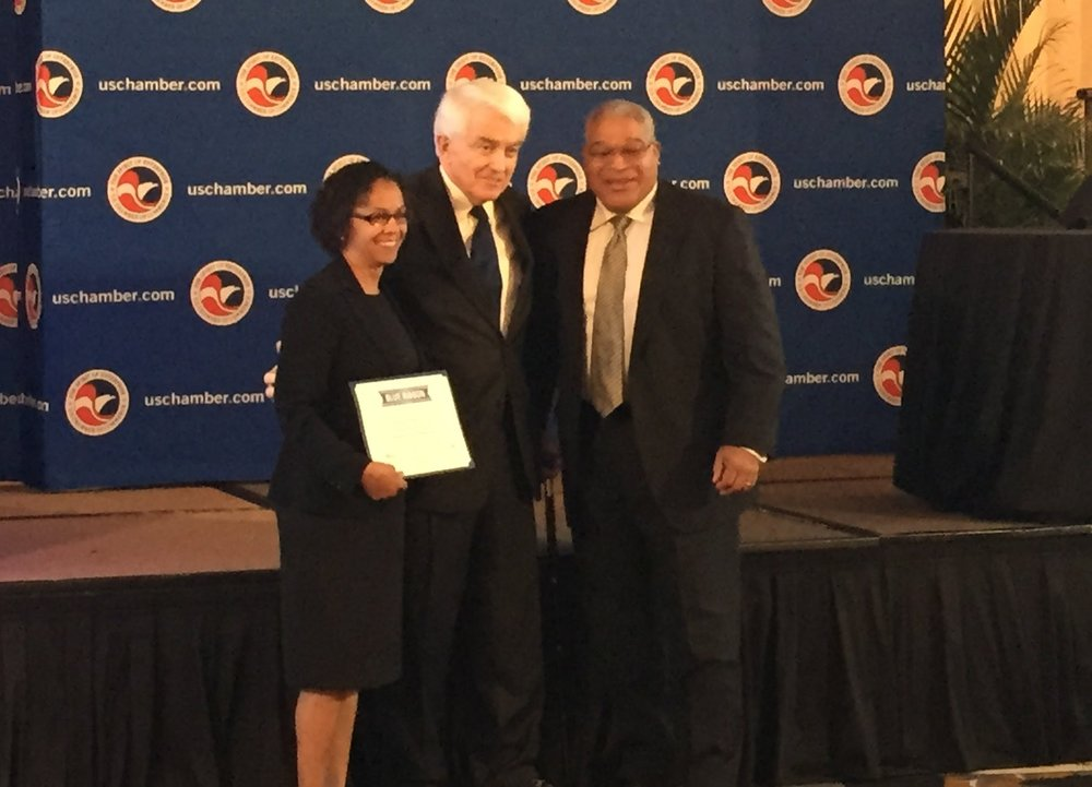 News elemental methods dcthe us chamber of commerce today announced elemental methods llc of irving texas as a winner in its annual blue ribbon small business awards malvernweather Image collections
