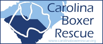 Carolina Boxer Rescue Inc.