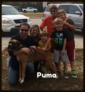 puma forever.jpg