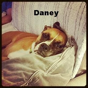 daney relax.jpg