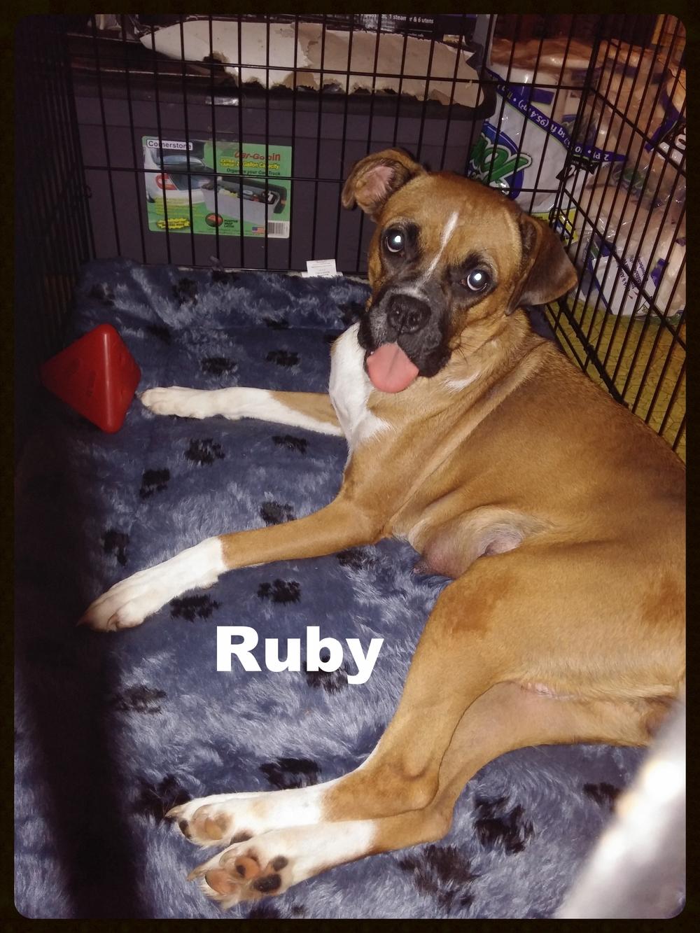 ruby new a 1.jpg