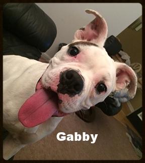 gabby new.jpg