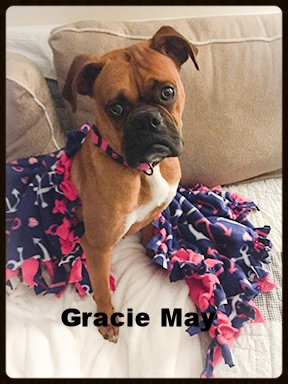 gracie may 1.jpg