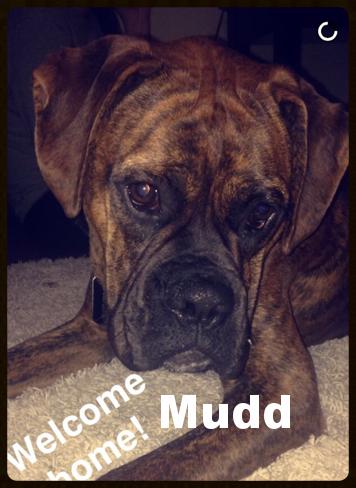 mudd 1.PNG