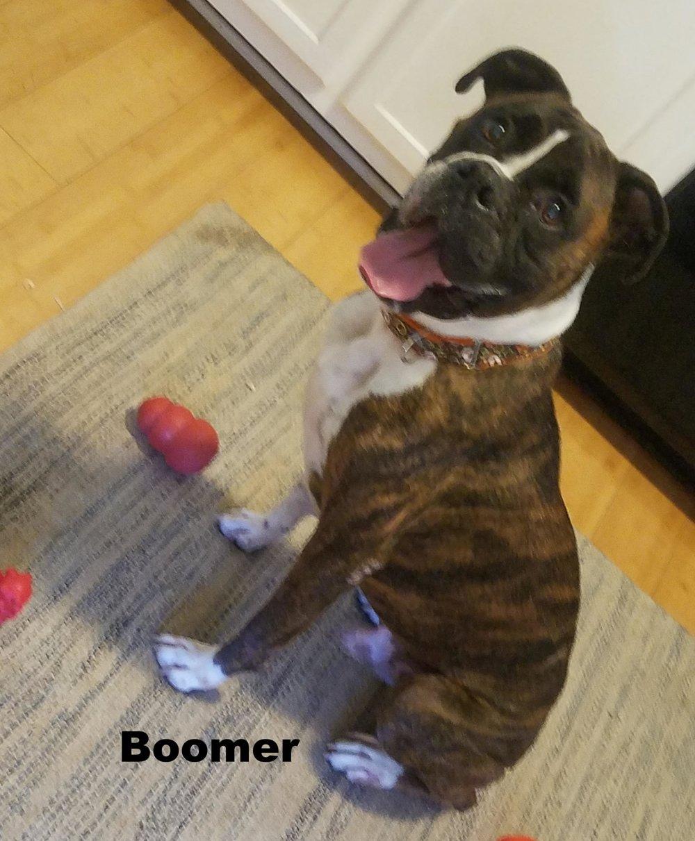 boomer2.jpg