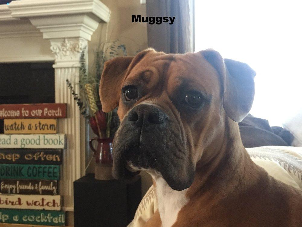 muggsy1.JPG
