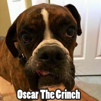 OscarGrinchHT.jpg