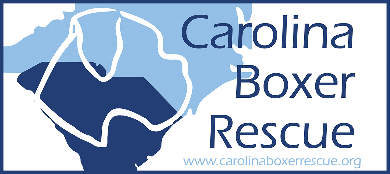 Carolina Boxer Rescue