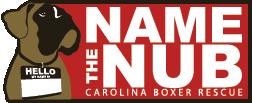 NameTheNub.png