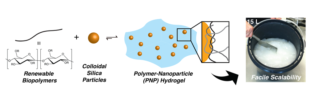 Scalable Biomimetic Hydrogels for Industrial Applications