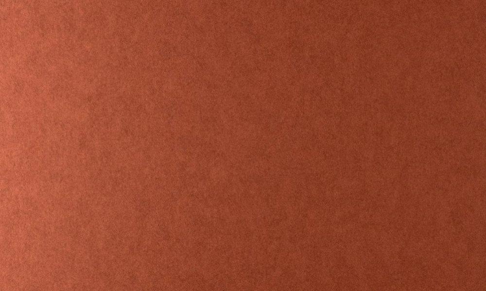 Colour 20529