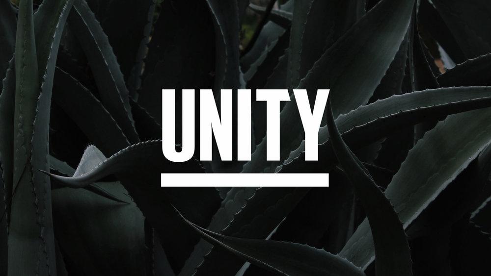 unity case study.005.jpeg