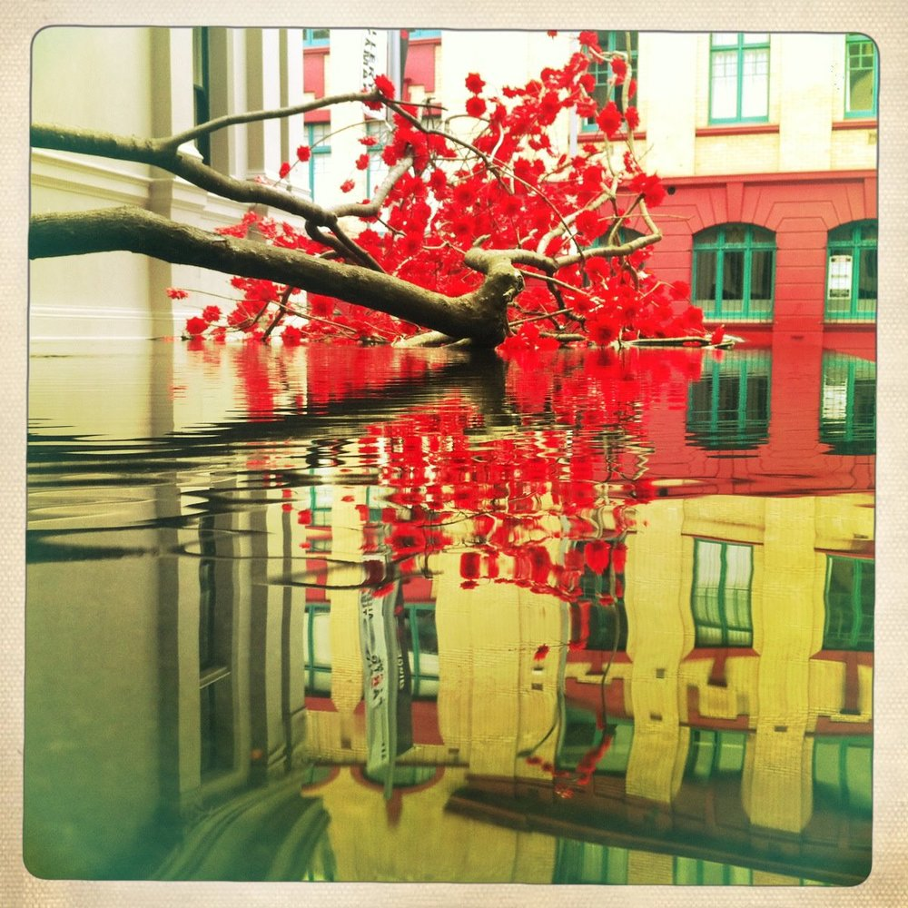 Red Tree 4.jpg