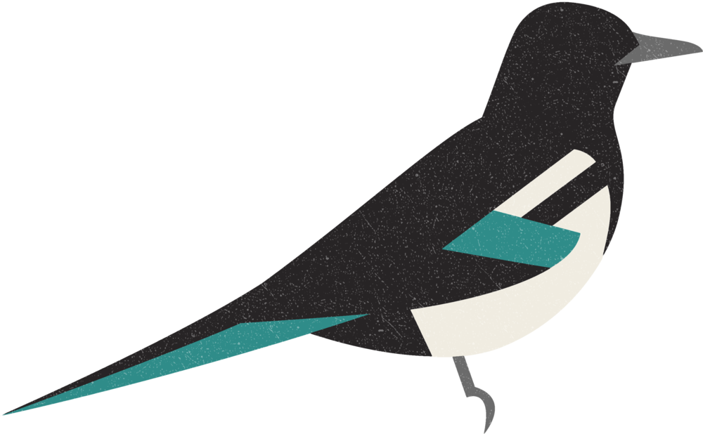 magpie.png