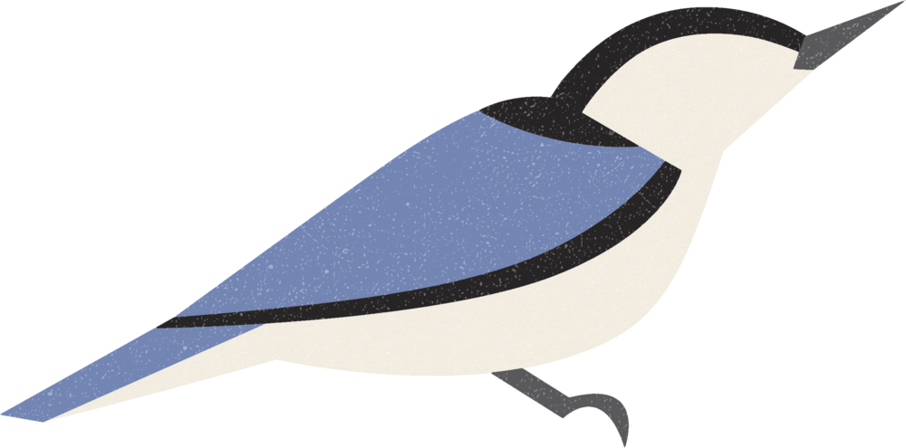 nuthatch.png