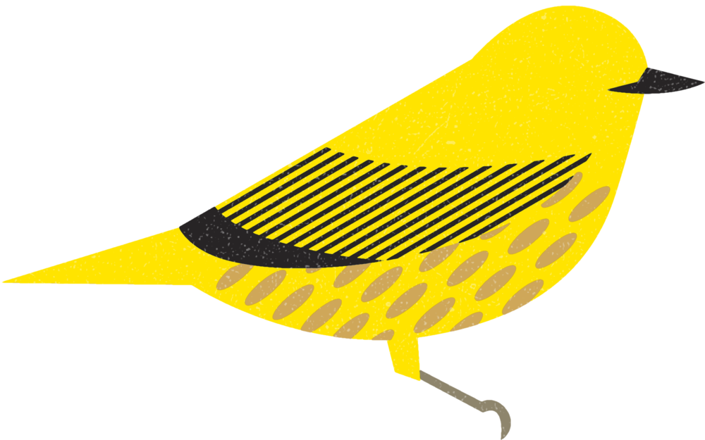 yellowwarbler.png