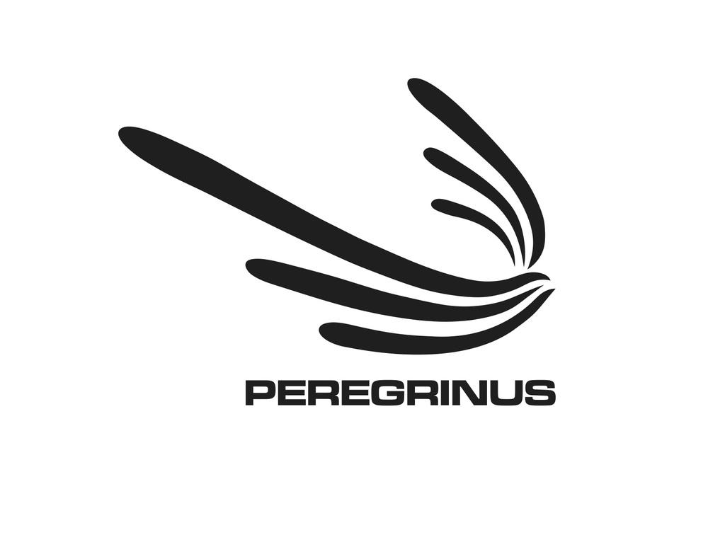 peregrinus1.jpg