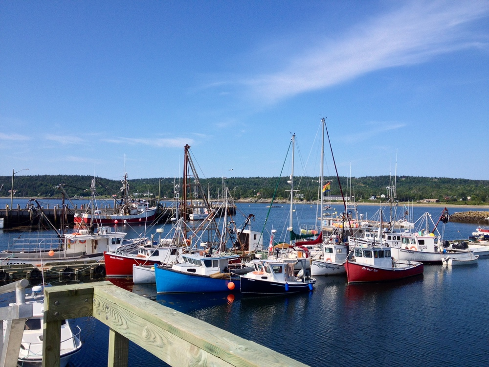 We arrived in North Head Wharf, Grand Manan Island, on 4 August 2014.   Peregrinus  is on this photo, center, behind the wharf.  A phone call to the Canadian Border Services Agency that same afternoon and voila!, we were checked into Canada.  Were that all countries worked like so.