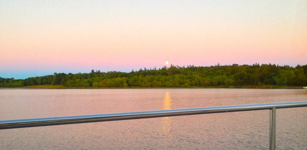 "Purple moonrise in the Northeast Arm, Grand Lake, Saint John River. 7:56PM, 8 September 2014, iPhone 4S, 1/24."""