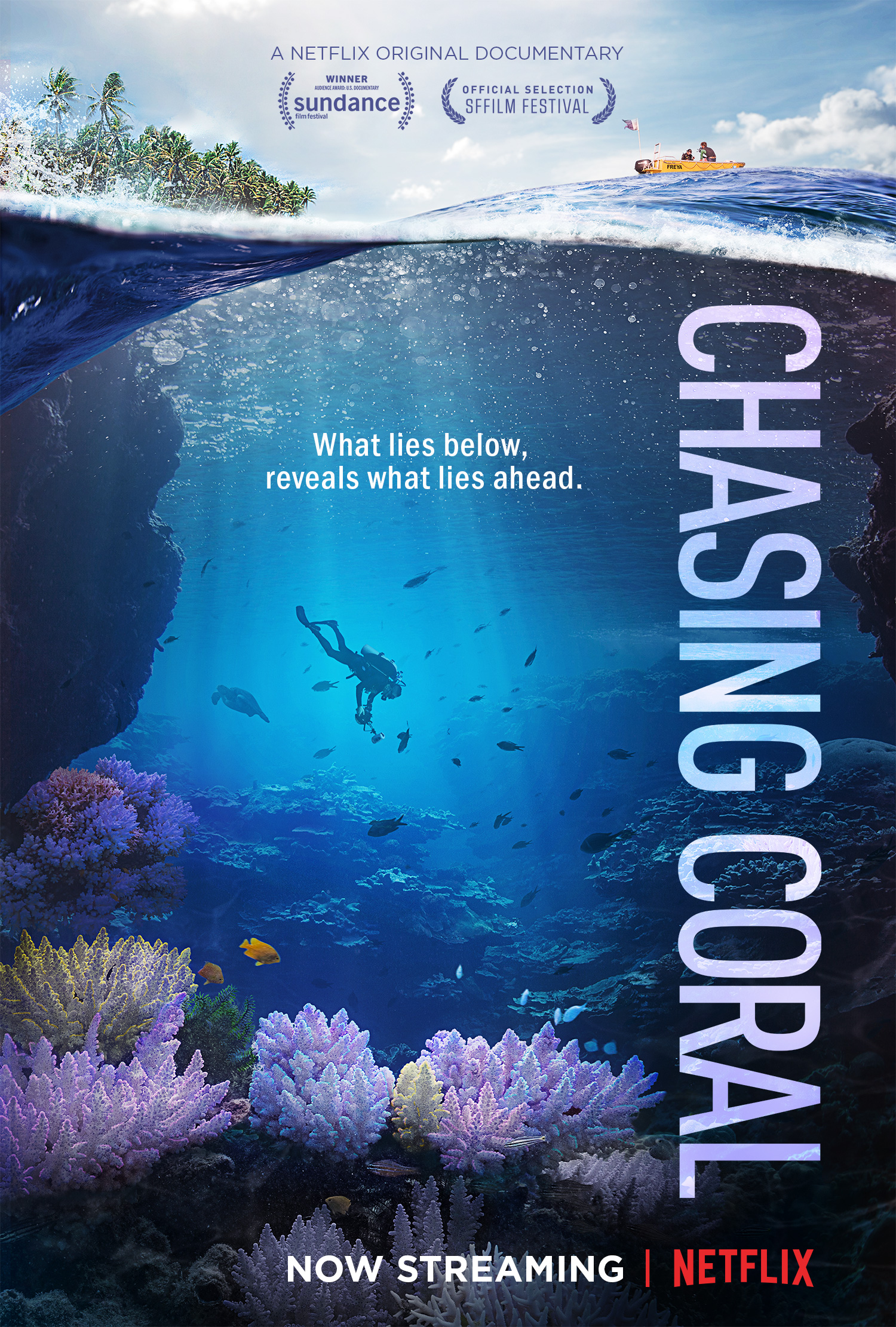 "Feeling Blue: ""Chasing Coral"" & ""Mission Blue"" — IN MY VISIONS"