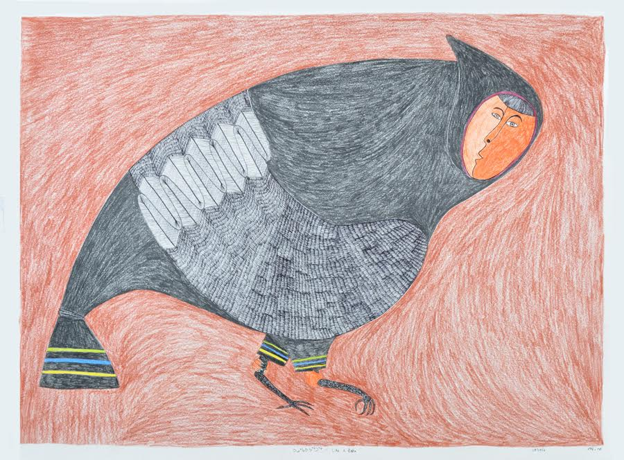 Like a Raven<Br>23 x 30<Br>Graphite, Colour Pencil and Ink<Br>SOLD