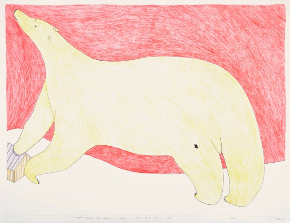 Adopted Polar Bear That Appeared in a Dream<br>23 x 30<br>Coloured Pencil, Graphite, Ink<br> SOLD