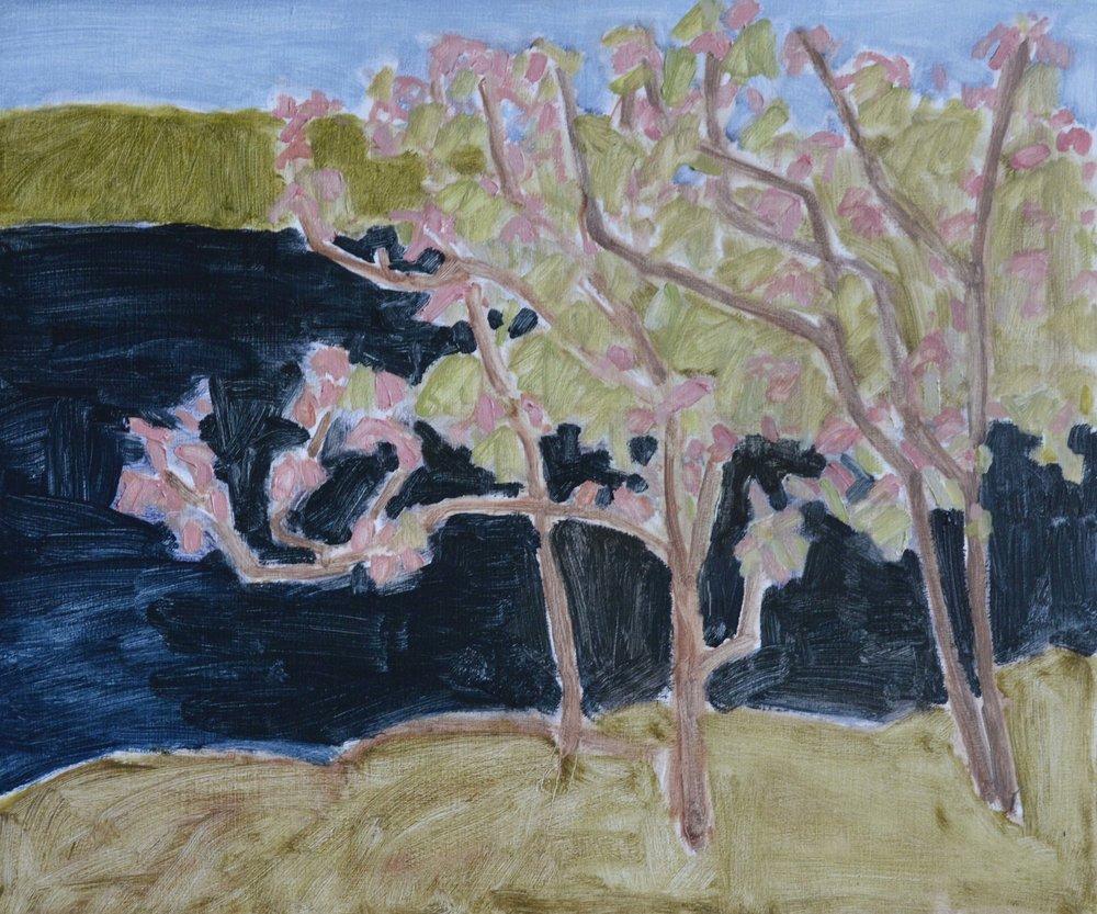 White Oak in Flower<br>15 x 18<br>Oil on Panel<br>$ 1500