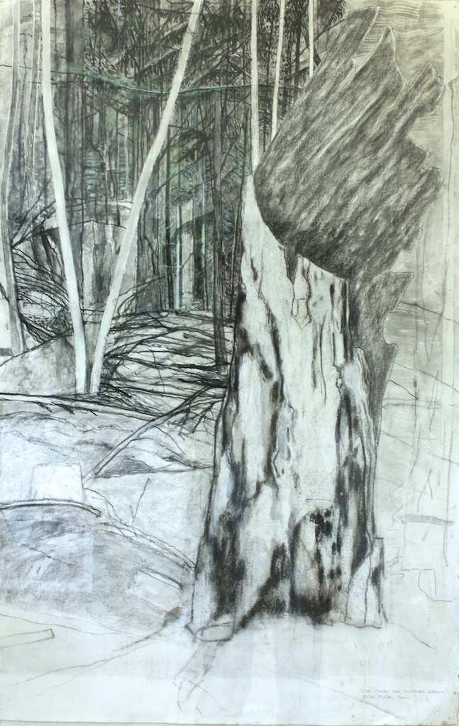 Site Study for Summer Dream<Br>Miles Hunter<Br>39.5 x 25.5<Br>Charcoal, Conté, Graphite<Br>$ 3000