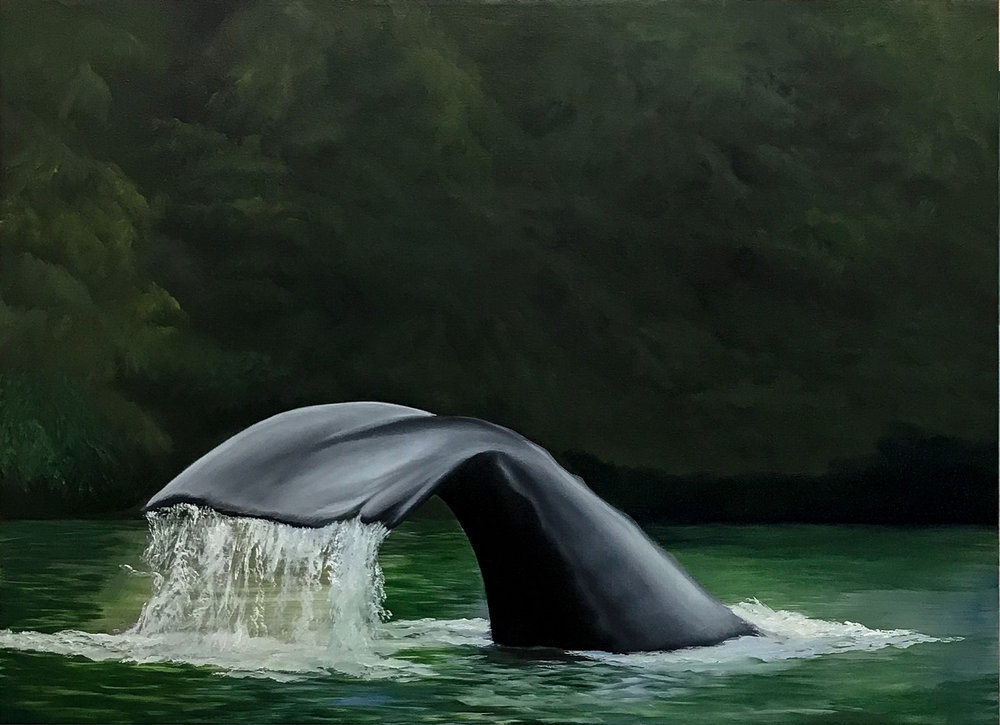 Humpback Tail<Br>30 x 40<Br>Oil on Canvas<br>$ 2800