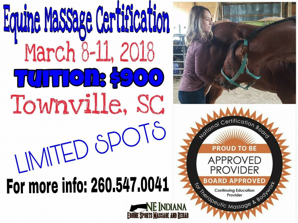 Equine Massage Certification Palmetto Equine Hospital March 8 11