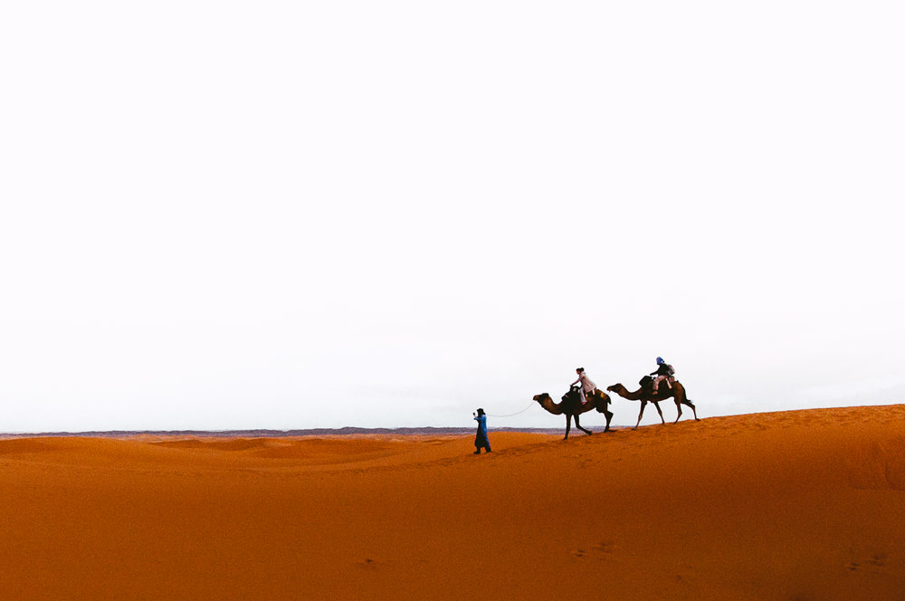 Camel trekking through the dunes.