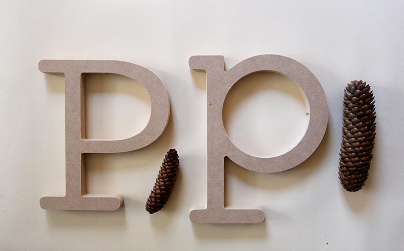 P_PIGNAlow.jpg