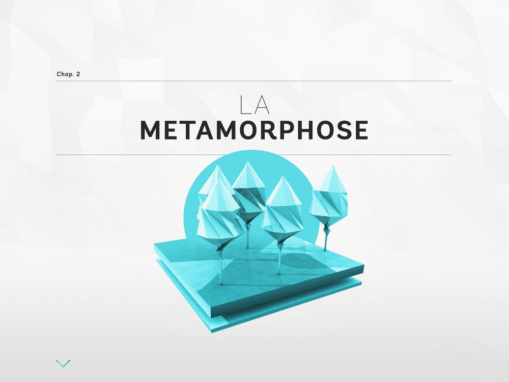 metamorphose_0000_COVER3.jpg