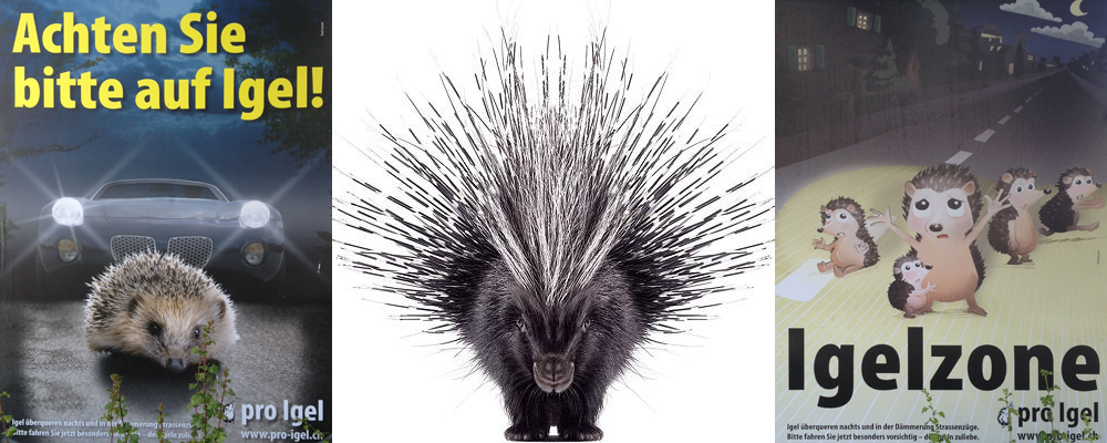 (c) whatever this animal rights group is that wants to save the porcupine in switzerlans