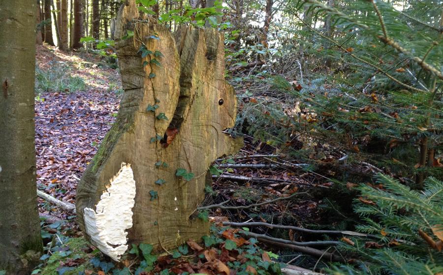 wood106.png