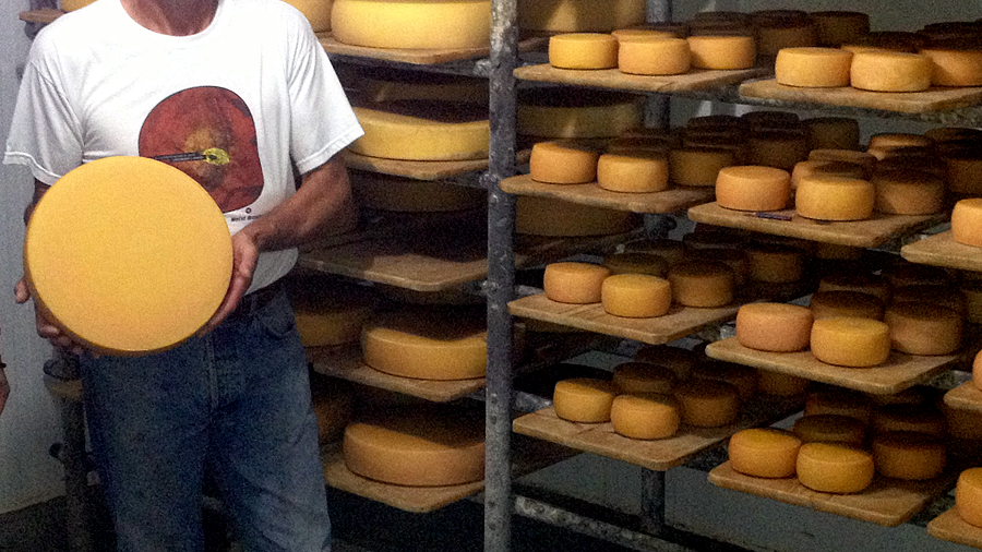 swiss man in brazil making cheese (c) mark somple 2015