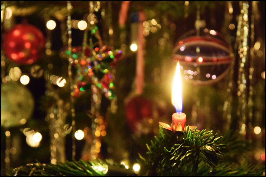 enjoy the christmas tree candles (c) mark somple 2017