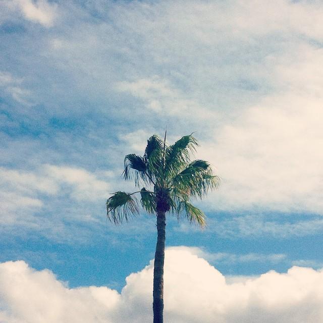 Lanzarote 5.jpg