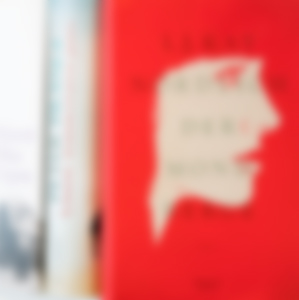 Hanseatische Gesellschaft für Verlagsservice