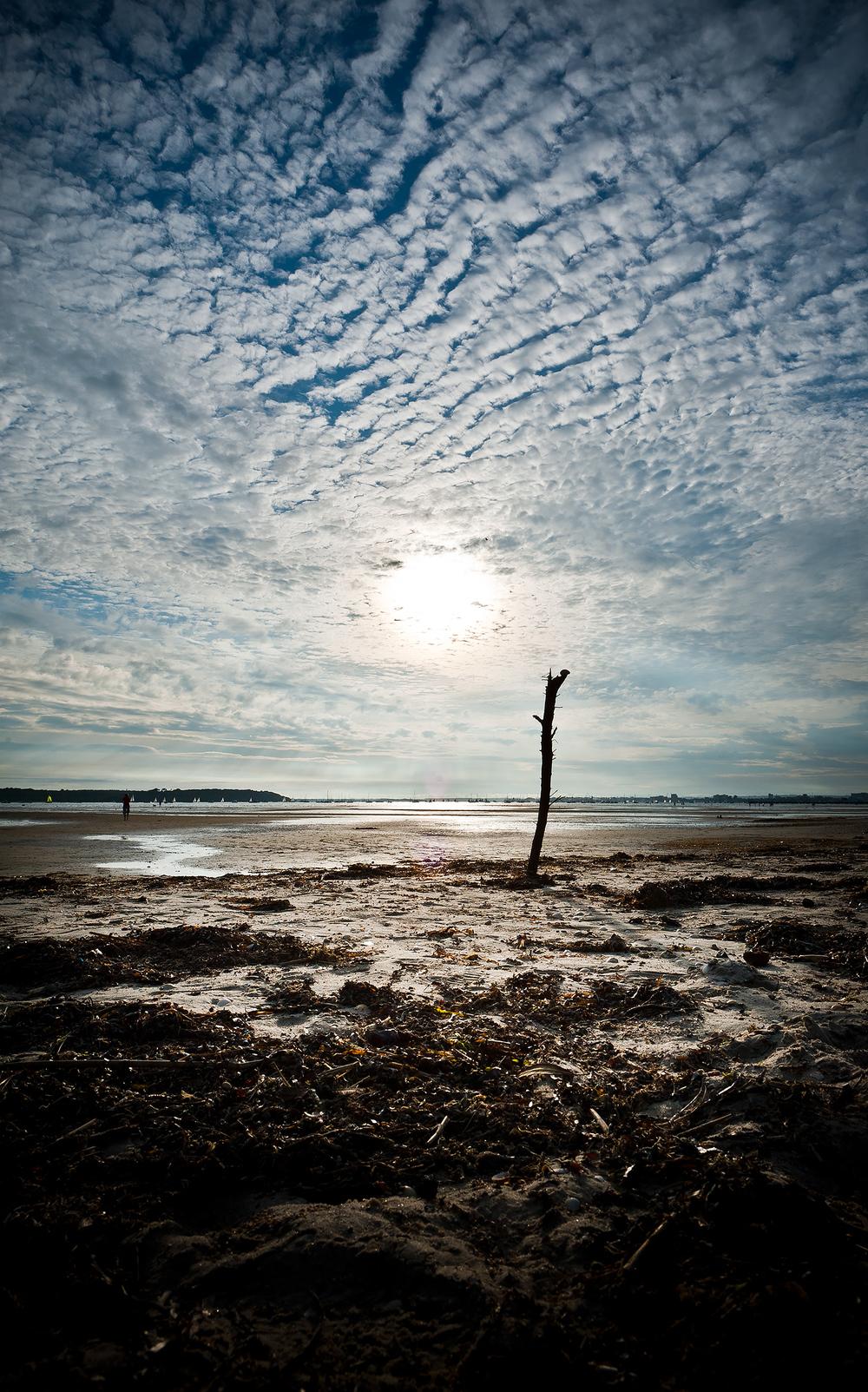 Sandbanks-3.jpg