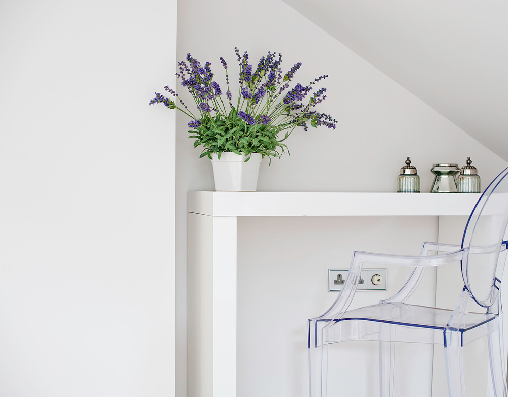 _interior-photography-residential-dorset-boltons-6.jpg