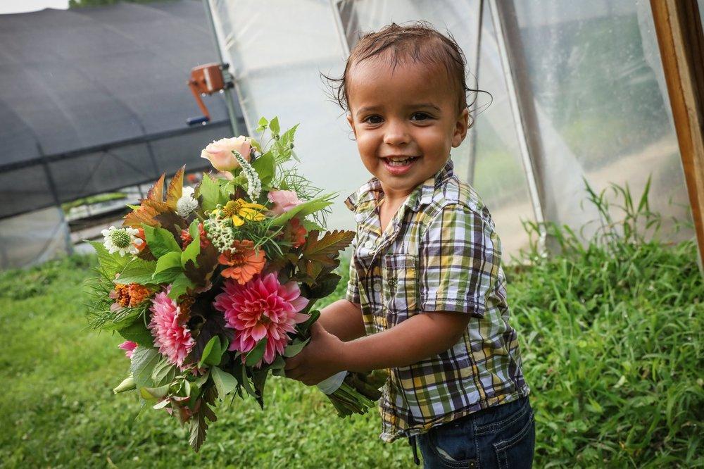 Bulk Flowers -
