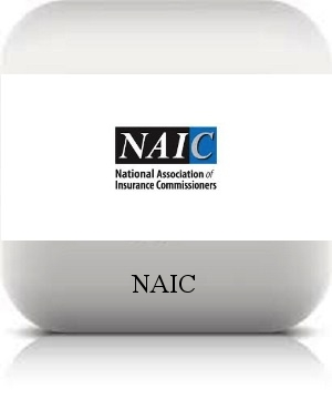 naic.png